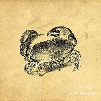 Edward Fielding - Crab Vintage