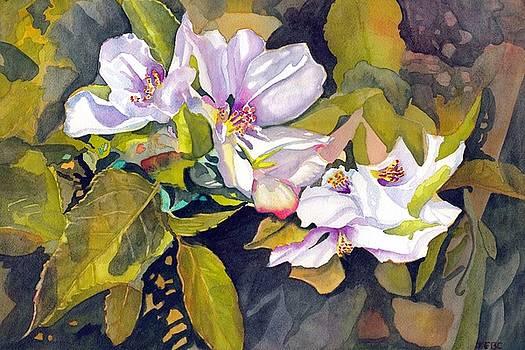 Crabapple Bonsai in Bloom by Gerald Carpenter