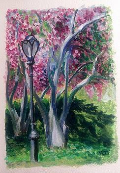 Crabapple Spring Burst by Nicolas Bouteneff