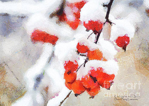 Crabapples in the Snow by David Perry Lawrence
