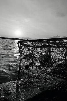 Crabbing on the River by La Dolce Vita
