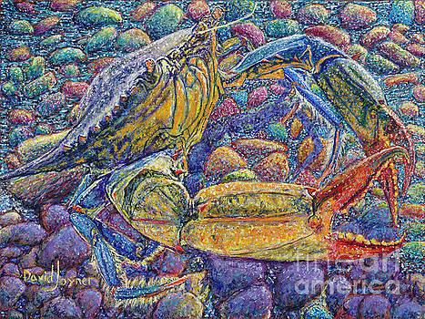 Crabby by David Joyner