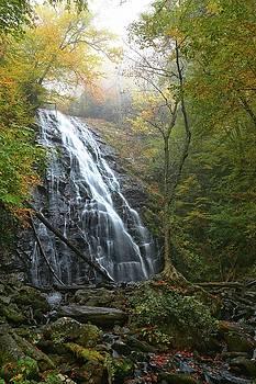 Crabtree Waterfall by Carol Montoya