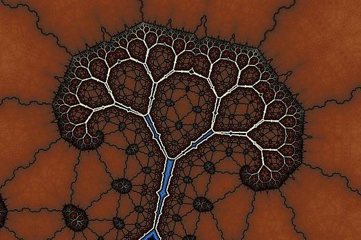 Cracked Angular Tree by Mark Eggleston