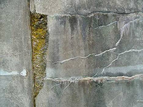 Cracked wall by Claudia Stewart