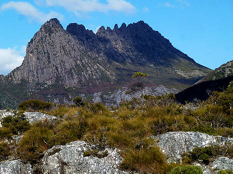 Cradle Mountain Tallest Peak by Sarah King