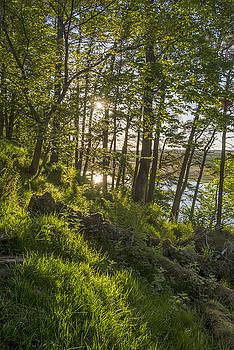 David Taylor - Crag Lough backlit