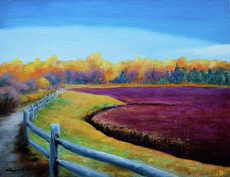 Cranberry Bog by Michael McGrath
