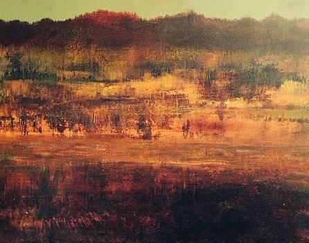 Cranberry Fields in November by Judy Osiowy