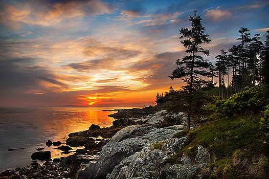Cranberry Sunrise by JD  Fielding