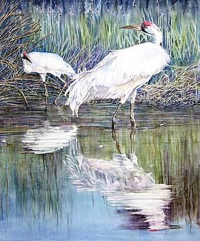 Vicky Lilla - Crane Feathers