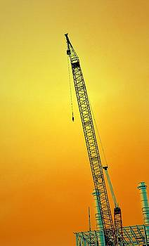 Michelle Calkins - Crane with Towers