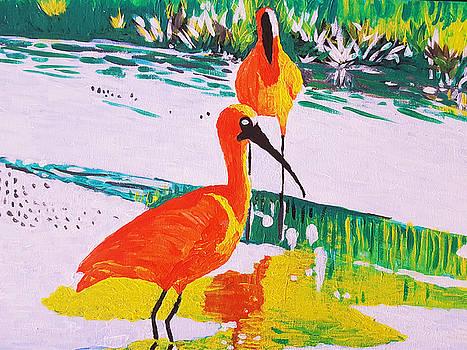 Cranes at the Marshland by Adekunle Ogunade