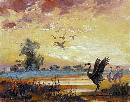 Cranes - evening flight by Irek Szelag