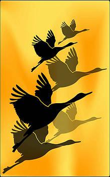 Cranes in flight by Rumiana Nikolova