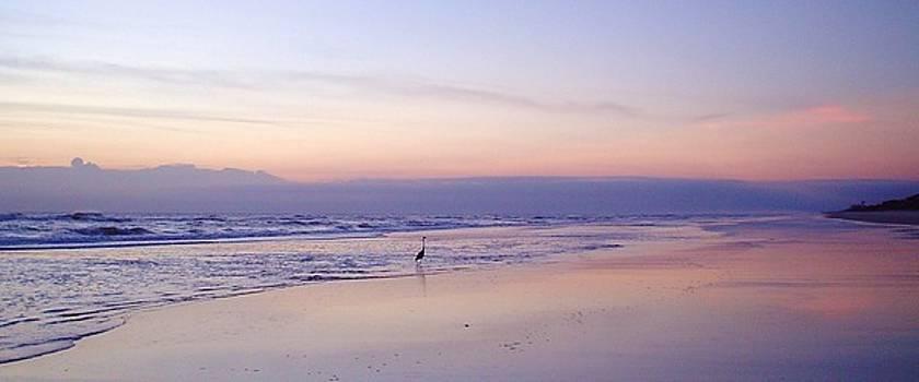 Crane's Pastel Morning by Cheryl Waugh Whitney