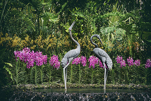 Cranes Sculpture at Singapore Botanical Gardens by Zina Zinchik