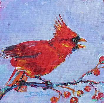Cranky Cardinal by Susan Davies