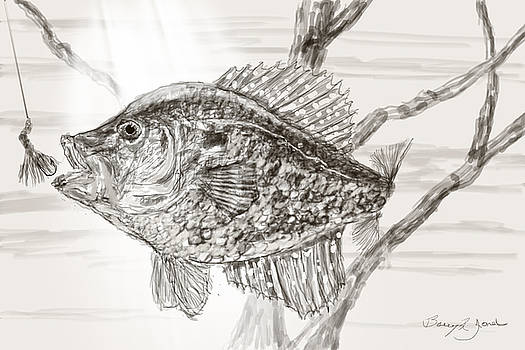 Crappie Time by Barry Jones