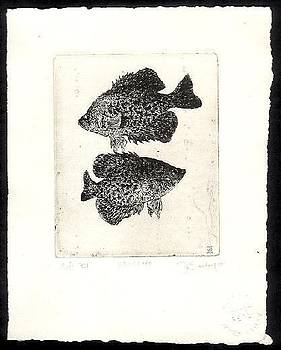 Crappies by James Bailey
