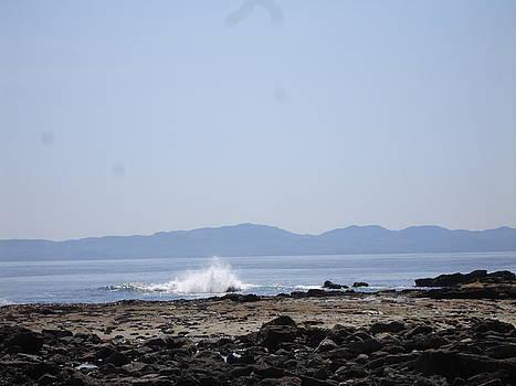 Crashing Wave by Glen Frear