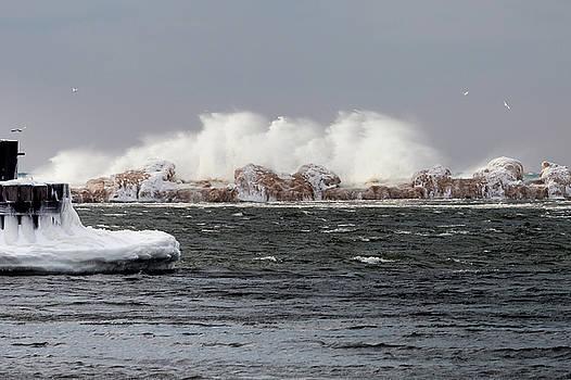 Crashing Waves by Fran Riley