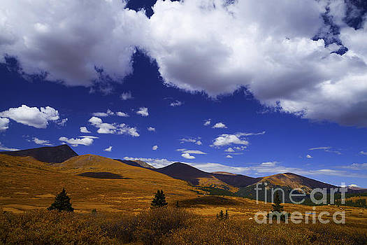 Crazy Blue Sky by Barbara Schultheis