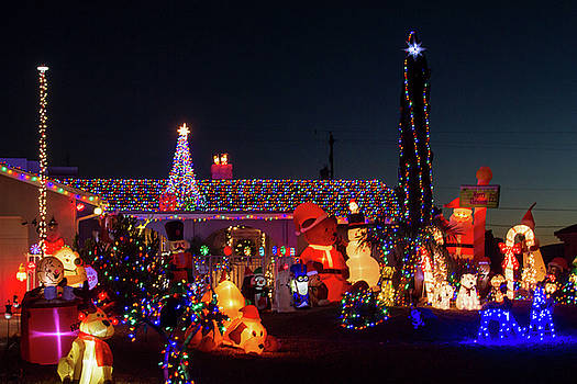 Crazy Christmas Lights 1 by Bonnie Follett