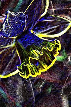 Michelle  BarlondSmith - Crazy Daffy