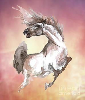 Crazy Horse by Angel Ciesniarska