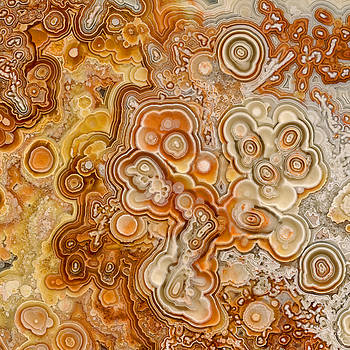 Crazy Lace Laguna Agate by Stephen Kinsey