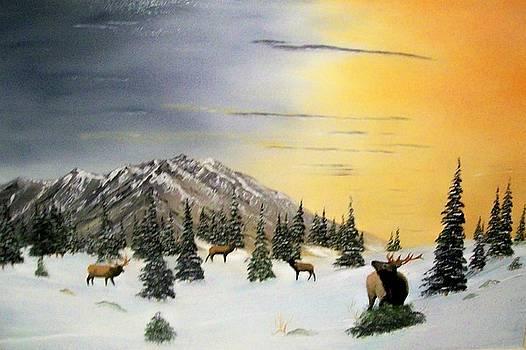 Crazy Mountains Sunset by Al  Johannessen