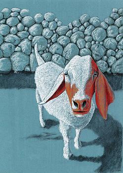Christel Huttar - Crazy Old Goat