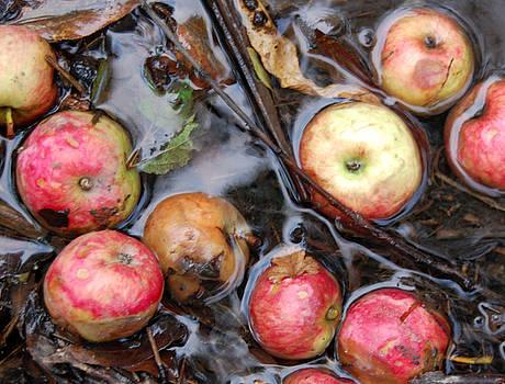 Creek Apples by Rhonda Van Pelt