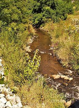 Creek At Twin Branch Dam Area    St. Joseph River      Indiana         September by Rory Cubel