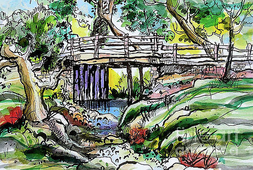 Creek Bed And Bridge by Terry Banderas