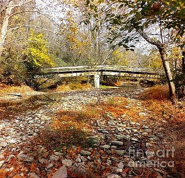 Creek Bed by David Neace