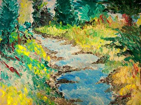 Creek by Cary Singewald