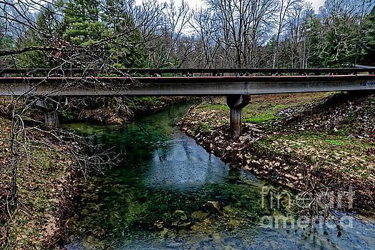 Creek Convergence by Paul Mashburn
