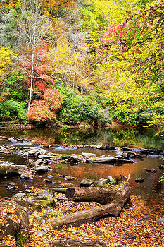 Jill Lang - Creek in the Autumn