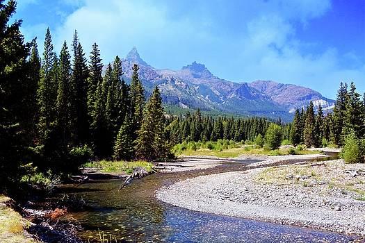 Marty Koch - Creek in the Beartooths