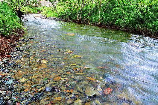 Creek Of Many Colors by Donna Blackhall