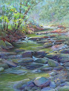 Creek Shadows by Marsha Savage