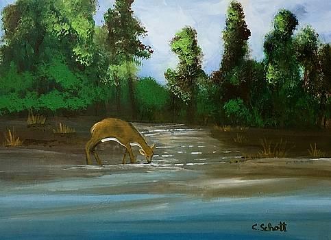 Creekside Drink by Christina Schott