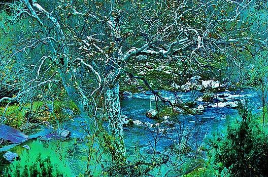Creekside by Helen Carson