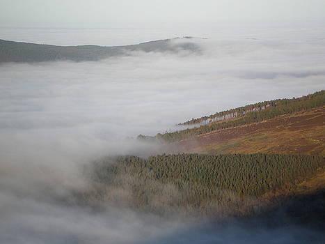 Creeping Fog by Jennifer Conroy