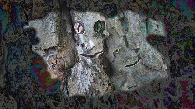 Creepy stone faces in colorful by Marco De Mooy