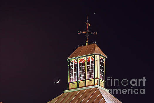 Crescent Moon Over Dallas by Lisa Holmgreen