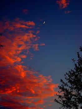 Crescent Moon Sunset by Julie Pappas