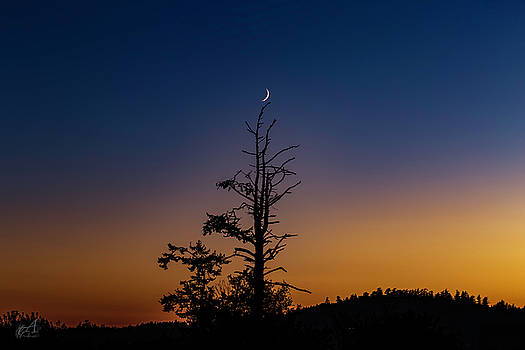 Crescent Moon by Thomas Ashcraft